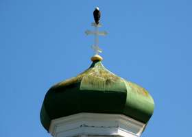 Closeup of eagle on one of the crosses atop cathedral, and stains on the onion dome underneath